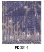 PD301-1